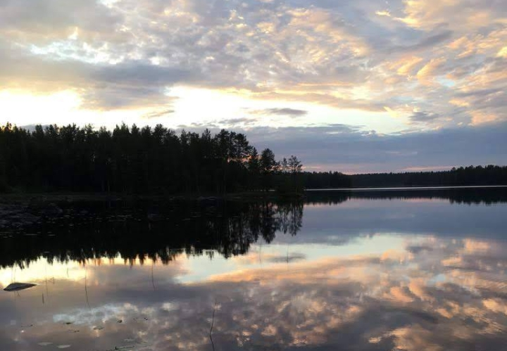 Training -Midsummer in Finland – time to launch the site!
