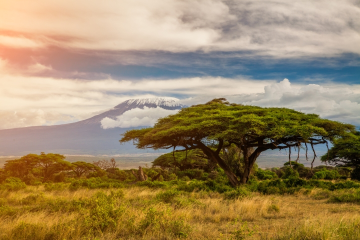 What challenge, why Kilimanjaro and whyme?