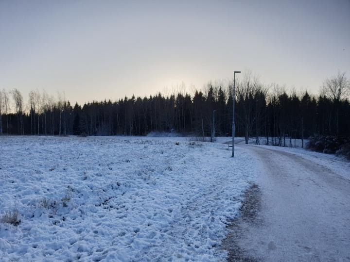 Training W50 – More Christmas hassle but tying to keep trainingon