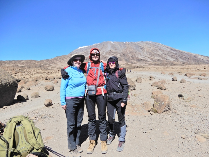 Kilimanjaro – Day 8/10 – From Kibo to Horombo camp